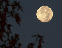 Setting moon (i_am_durin) Tags:
