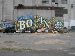 BOANS (Wood, Metal, Glass, Wicker and More) Tags: up skulls graffiti paint mr reader beef books spray read more crime reap vandalism bomb bombing booker boans mrboans boant