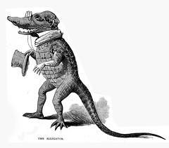 the_alligator_1879 (Al Q) Tags: alligator engraving childrensbook