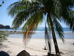 Pelada Beach, in Nosara