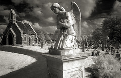 (Trevor Hare) Tags: uk england bw cemetery grave graveyard statue stone angel ir hampshire infrared portsmouth gr grdigital ricoh pointshoot bw093filter