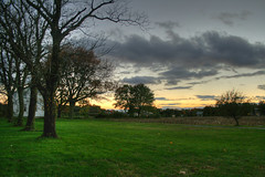 Three-trees (jason_minahan) Tags: autumn sunset newjersey farm nj princeton hdr mercercounty xti