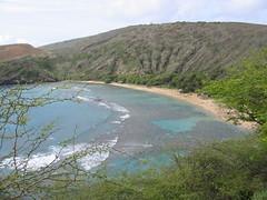 IMG_2276.JPG (t_feiler) Tags: hawaii oahu hanaumabay