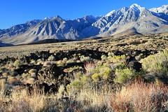 Cerro Gordo Buttermilk 222 (Steve Perdue) Tags: fallcolor 395 perdue easternsierra