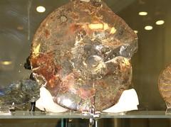 Ammolite (colros) Tags: vancouver ammolite