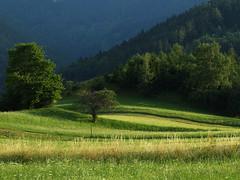 Schneebergdorfl (arjuna_zbycho) Tags: abigfave impressedbeauty