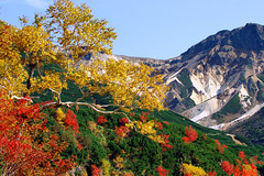 Biei Oct - by Taro416