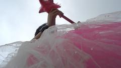 shell save the gray world (leninhahoy) Tags: macro movement fairy movimento nublado fada darkened