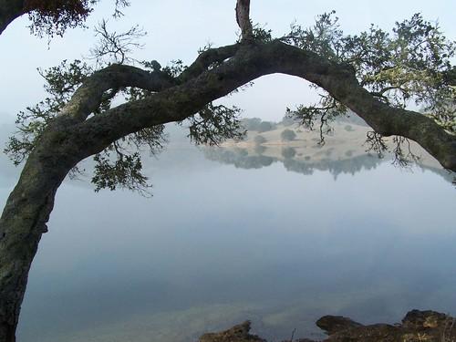 20061119 Bon Tempe Lake