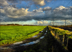 . After The Rain (iii) . 雨あがる (iii) . (3amfromkyoto) Tags: road uk england sky cloud field rain clouds landscape track railway dirt wires pools fields after crops puddles aftertherain overhead 3amfromkyoto 雨あがる flickr:user=3amfromkyoto