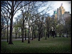 (Jane Kratochvil (Amazin' Jane)) Tags: newyorkcity centralpark today essexhouse