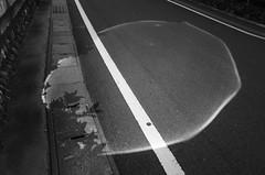 _R015074 (yukio sakaue) Tags: ricohgr gr bw blackandwhite border horizon shadow silhouette