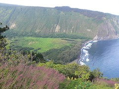 P1060687.JPG (kenzickler) Tags: hawaii valley waipio