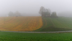 Autumn fog (Krogen) Tags: norway fog landscape norge norwegen olympus c7070 noruega nes scandinavia akershus tåke romerike krogen landskap noorwegen noreg skandinavia culturallandscape kulturlandskap