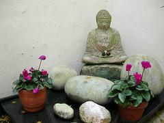 Courtyard Buddha