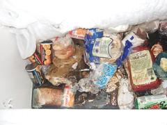 DSCF4063 (Derm Goddess) Tags: freezer cottagegrove rottenfood