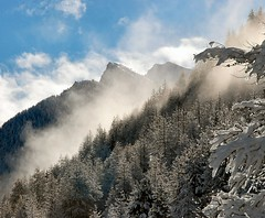 Brumes matinales  la montagne / Patch of mist in mountain landscape (Laurence TERRAS) Tags: trees winter light mountain snow france mountains alps clouds montagne alpes landscape europe hiver pins arbres pines 100views neige nuages paysage montagnes queyras ceillac hautesalpes d80