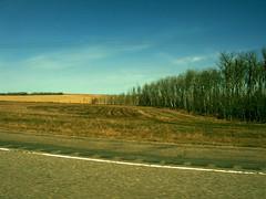Saskatchewan (Wzrdry) Tags: road trees sky canada nature spring nikon roadtrip coolpix fields saskatchewan prairies coolpix4200 wzrdry