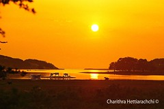 Dawn of a new day (charithra Hettiarachchi) Tags: top20srilanka