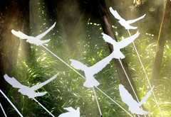 give peace a chance .. (areyarey) Tags: world white holiday bird beauty grass garden thailand hope freedom design fly flying globe heaven peace symbol earth contemporary dove traditional faith flight peaceful scene celebration simplicity innocence tradition spiritual greeting goodwill doves symbolism purity givepeaceachance outstandingshots artlibre areyarey anawesomeshot