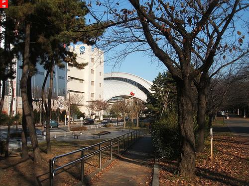奥に見えるのが東京辰巳国際水泳場