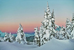 snowy trees at Jumbo pass (xtremepeaks) Tags: christmas xmas trees winter mountain snow canada ski mountains tree nature beautiful sunrise spectacular landscape dawn cabin skiing bc snowy magic pass hut backcountry 1000v100f magical jumbo gettyimages abw jumbopass naturesfinest bigmomma 83points interestingness34 i500 1500v60f 3000v120f omot xtremepeaks impressedbeauty aplusphoto favemegroup6 explore18feb07 superhearts bestofwinter thechallengefactory thepinnaclehof tphofweek78