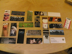 My Flickr Moo Cards