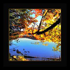 Flaming* (Imapix) Tags: voyage travel autumn canada fall photo photogr