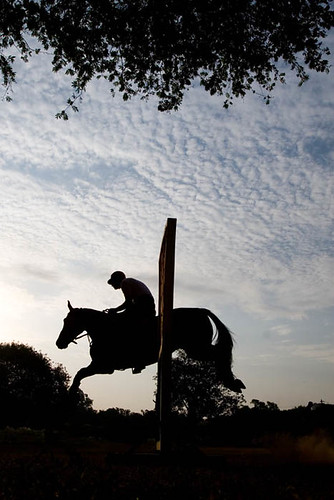 Horse Rider Silhouette