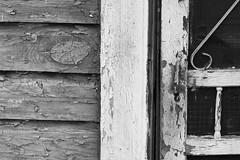 back door (maclogue) Tags: blackandwhite steel sloss utatathursdaywalk28 companyhouses