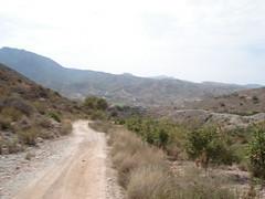 DSC01502 (netareas) Tags: murcia area cartagena vivienda terrenos fincas inversores escarihuelas