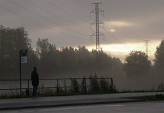 Bus stop ([ Petri ]) Tags: road mist fog sunrise espoo finland dawn waiting dailycommute busstop powerline