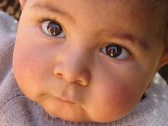 I´m an Iranian nomadic kid