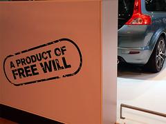 freewill.jpg