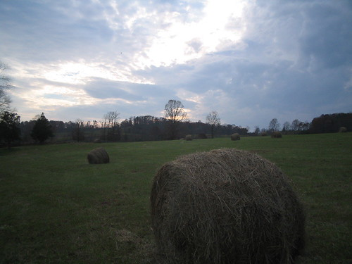 Haybales at Dusk