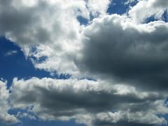 dbg sky 005
