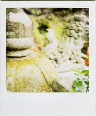 zeniarai benten shrine (masaaki miyara) Tags: japan polaroid sx70 temple shrine kamakura zen fortunetelling omikuji   zeniaraibenten argylestreettearoom masaakimiyara