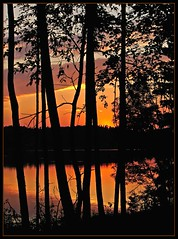 Sunset through trees (marika_te) Tags: trees sunset sky lake black nature evening bravo natural latvia latvian instantfave marikate outstandingshots specland fivestarsgallery abigfave superaplus aplusphoto superhearts