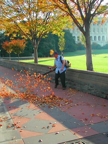 Flick: A New Leaf Overturned