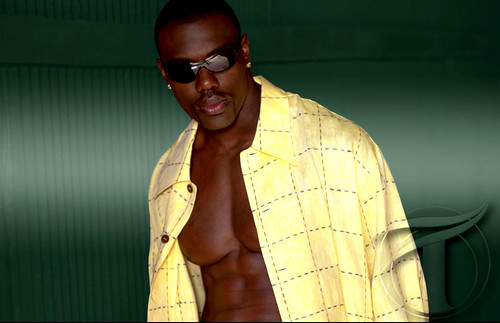 terrell owens wallpaper. Terrell Owens Wallpaper (101)