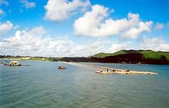 Đảo Quần Lân (ếch xanh) Tags: phongcảnh