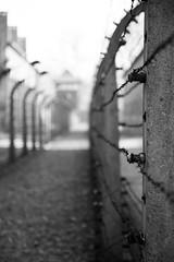 Auschwitz ... II (Alex Verweij) Tags: äuschwitz birkenau annefrank alexverweij gestapo nazi vernietigingskamp kamp joden oorlog war prikkeldraad wachttoren martelen marteling nooit vergeten never again polen