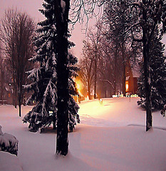 """Let it snow, let it snow, let it snow"" (linda yvonne) Tags: snow beauty weather twilight lavender beautifullight impressed letitsnow winterwonderland likeapainting i500 interesting4 abigfave outstandingshot shieldofexcellence lindayvonne impressedbeauty holidaymood songref"