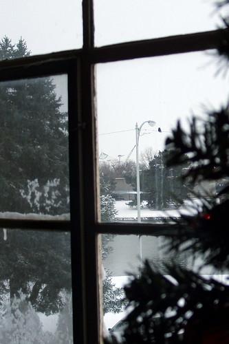 White December