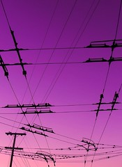 wired to go (Darwin Bell) Tags: sky topf25 silhouette topf50 purple wired sfist mywinners abigfave p1f1 5for2 flickrgold 30faves30comments300views superaplus aplusphoto