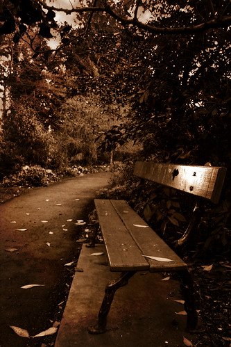 Bench by griangrafanna