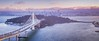 Aerial New Bay Bridge San Francisco Skyline (tobyharriman) Tags: 2015 45mm adventure aerial architecture art artist bayarea beautiful bridges california cityscape custom dji drone fineart landscape olympus outdoor pacificnorthwest pano panorama photographer photography photos pictures prints sanfrancisco scenic sf summer sunset timelapse tobyharriman tourism