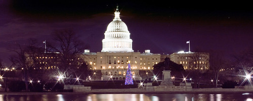 Capitol Christmas Tree, by flickr user flickr-rickr
