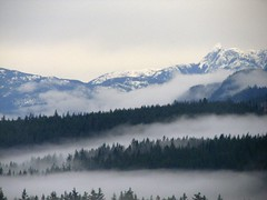 Fog in the Valley (Peggy Collins) Tags: trees winter mist snow mountains fog landscape scenery view explore 100views interestingness282 i500
