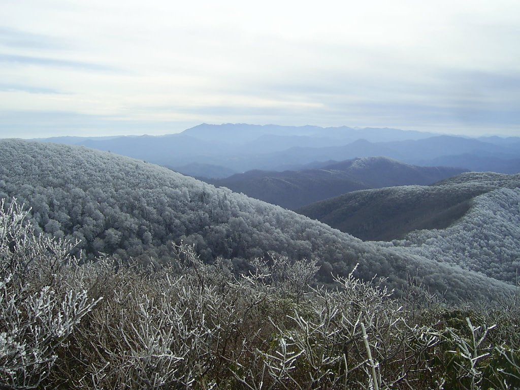 Ridge Hoarfrost